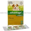 Advantage for Puppies and Small Dogs (Imidacloprid) - 100g/L (4 x 0.4mL)