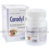 Carodyl (Carprofen)